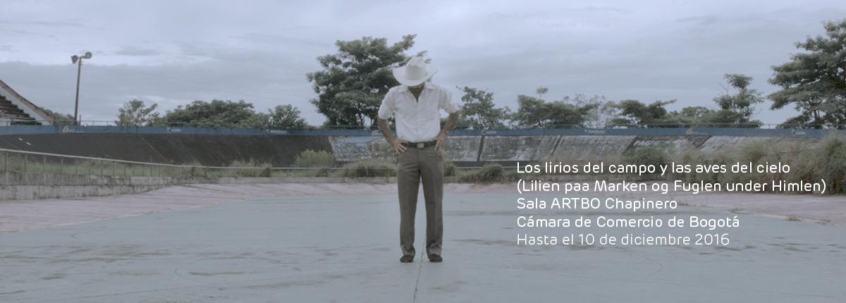 Sandra_R_los-lirios-del-campo