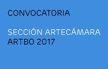 Seccion-Artecamara